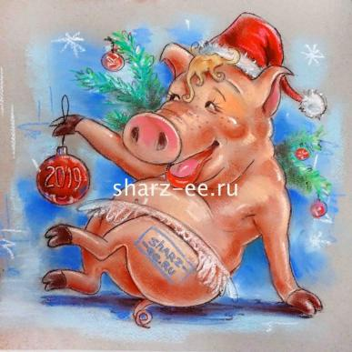 шарж год свиньи
